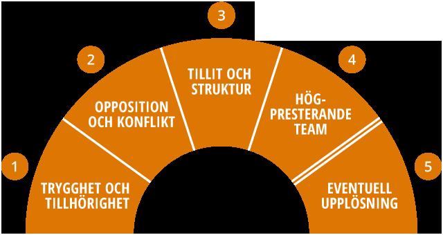 Den vetenskapliga modellen för grupputveckling.